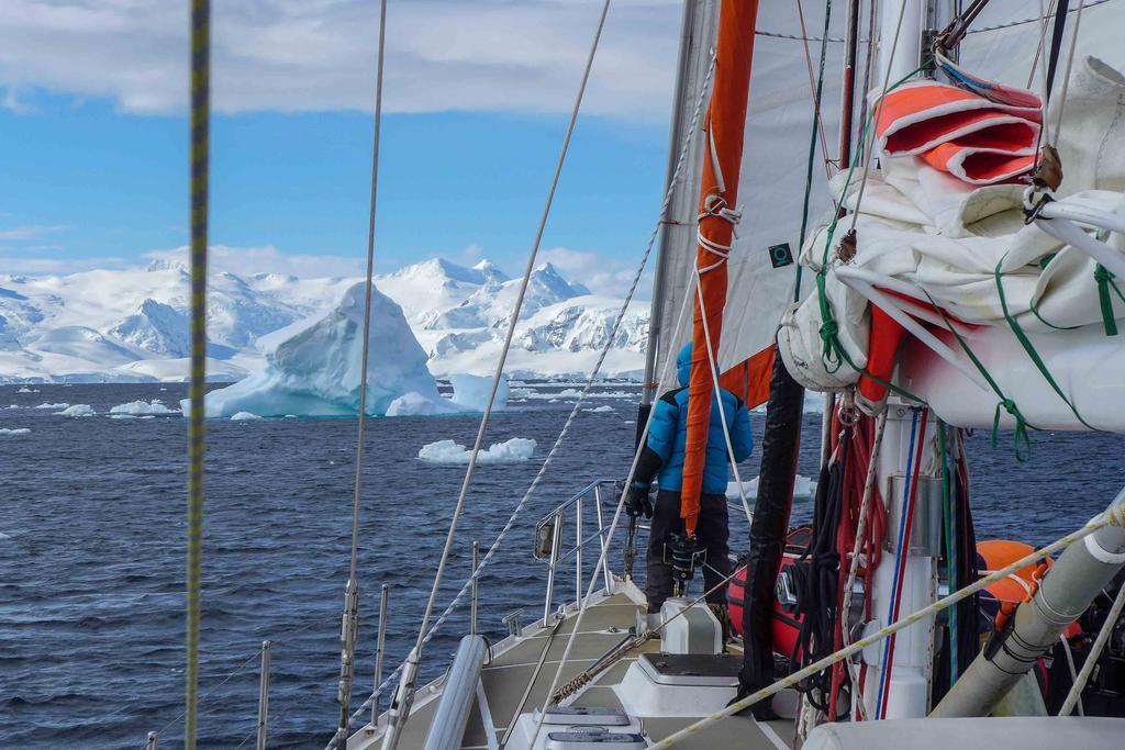 Antarctica 15