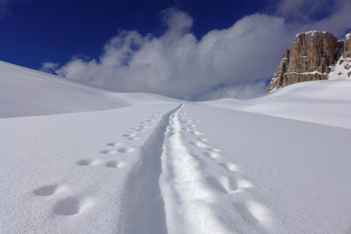 Dolomites Day Tours